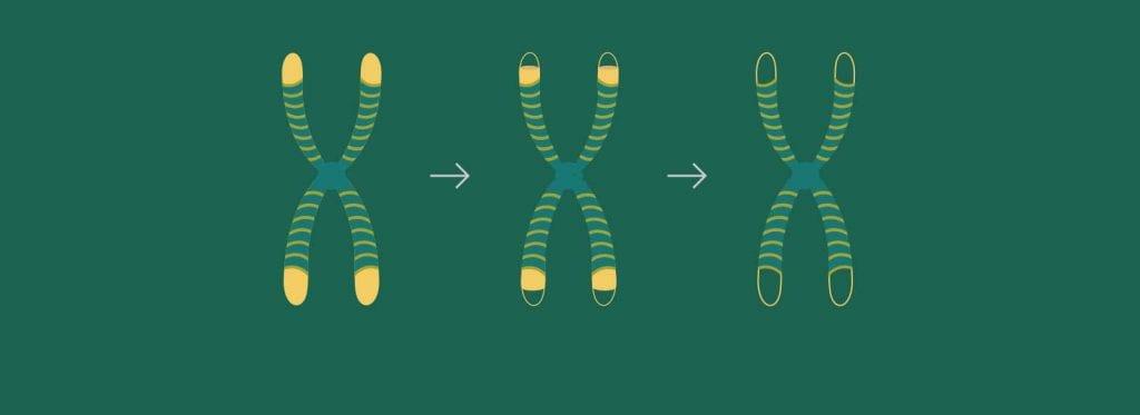 Skatinkite naujų ląstelių gamybą